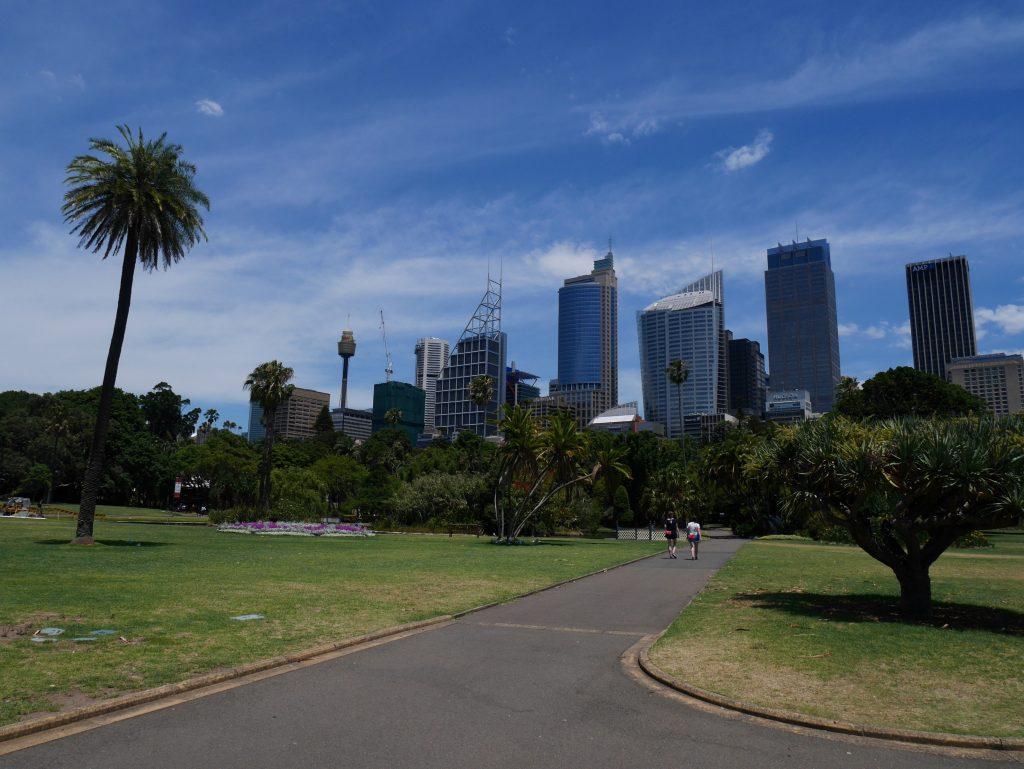 Le quartier d'affaire vu du Royal Botanic Garden