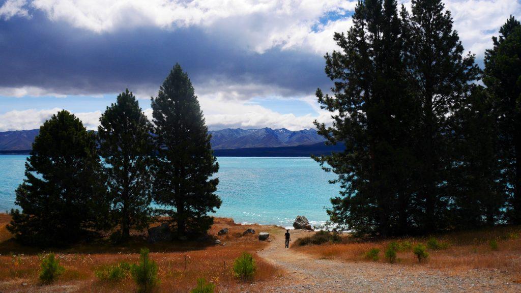 Le lac Pukaki au loin