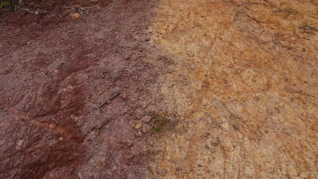 Une roche bicolore