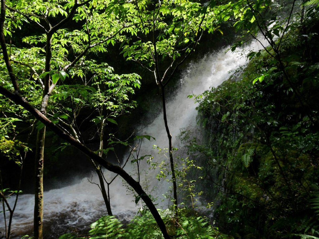 Une jolie cascade