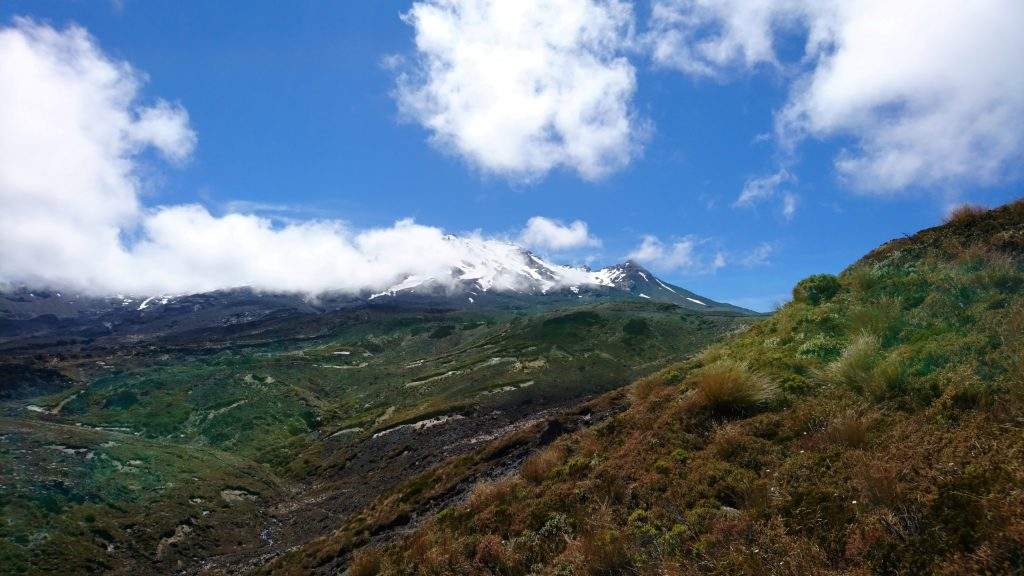 Vue sur Ruapehu