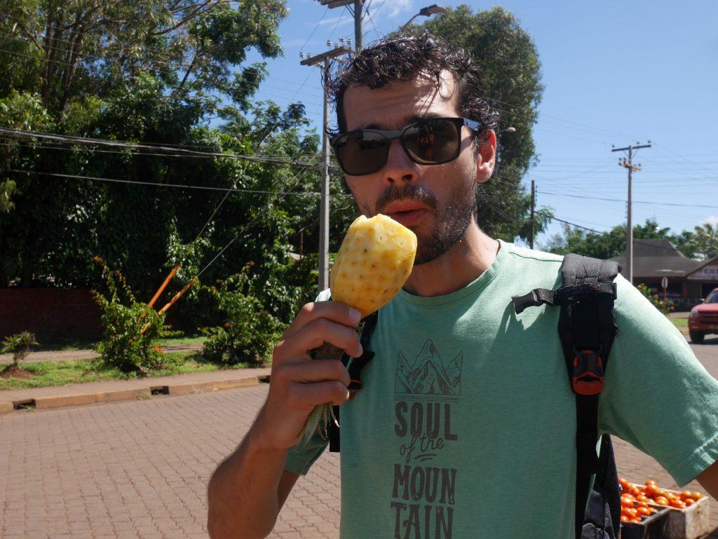 pause ananas