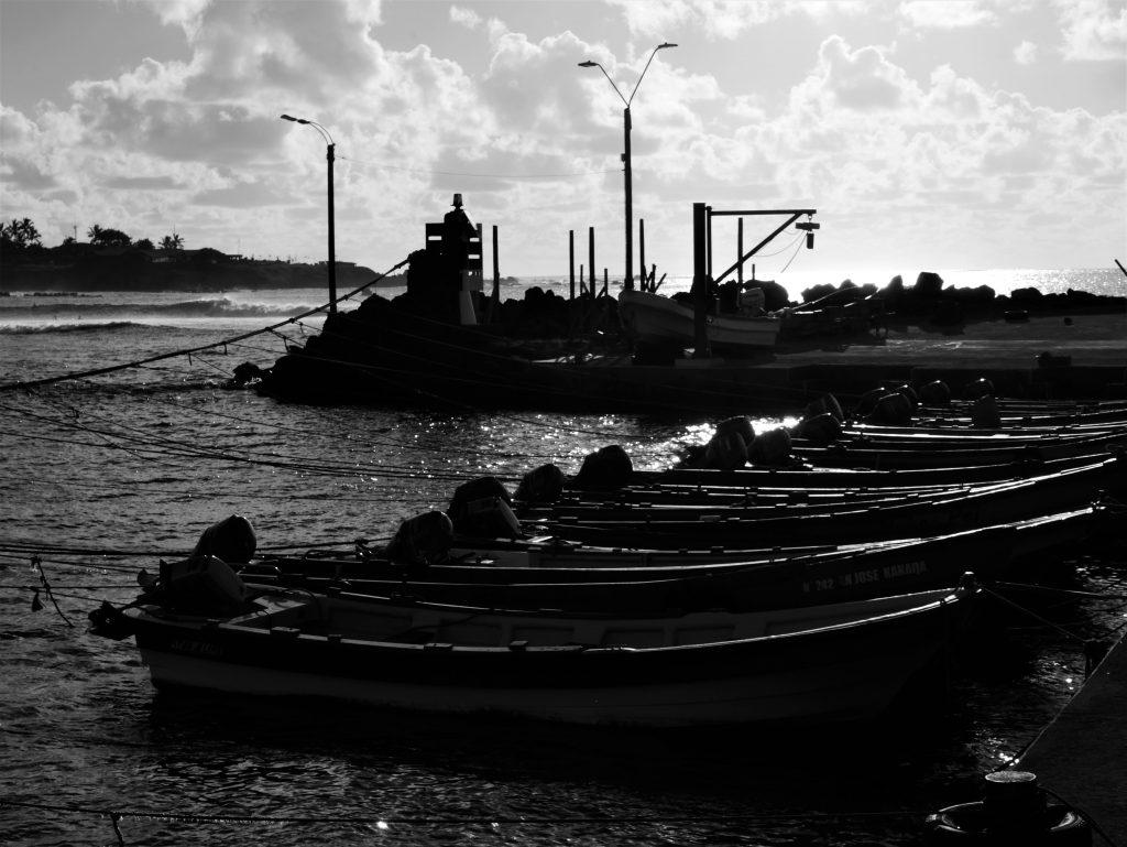 Le port au soleil couchant