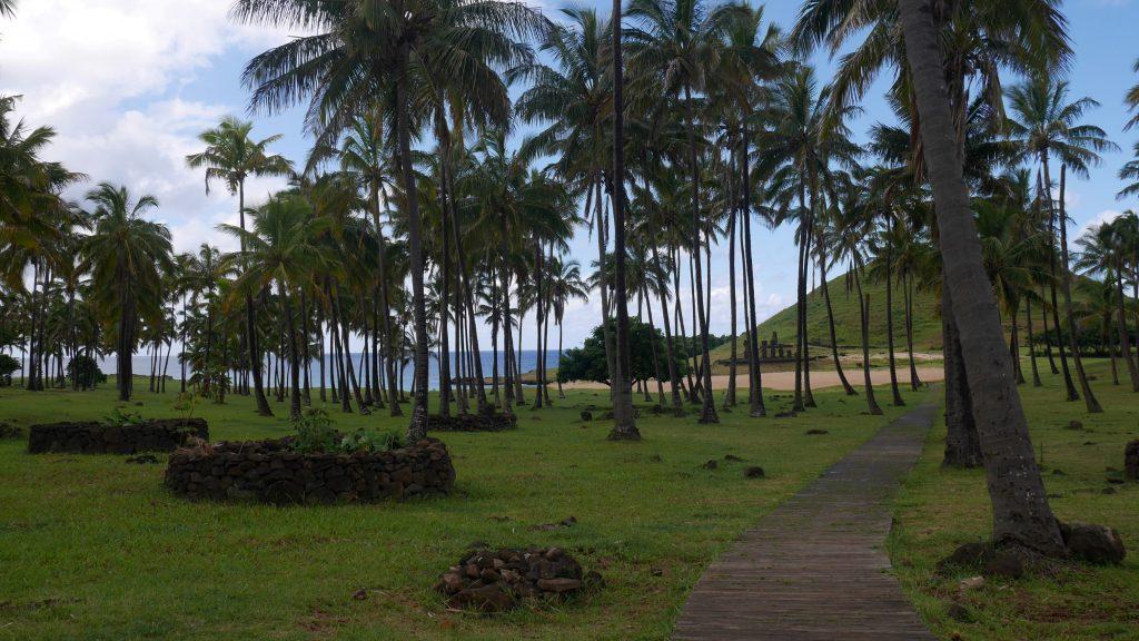La plage d'Anakena et ses Moai