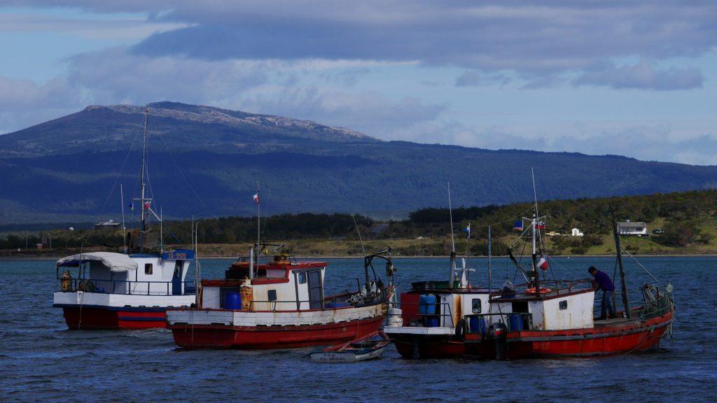 Bateaux de pêches
