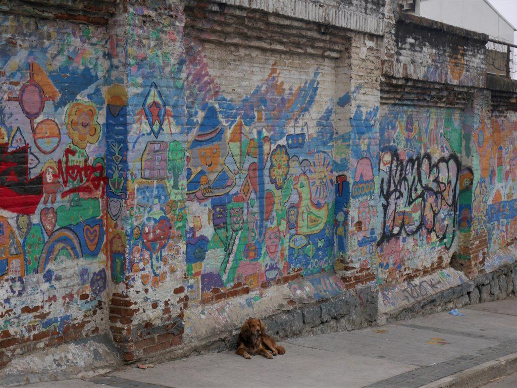 Une image classique dans la ville : les graffitis et les chiens