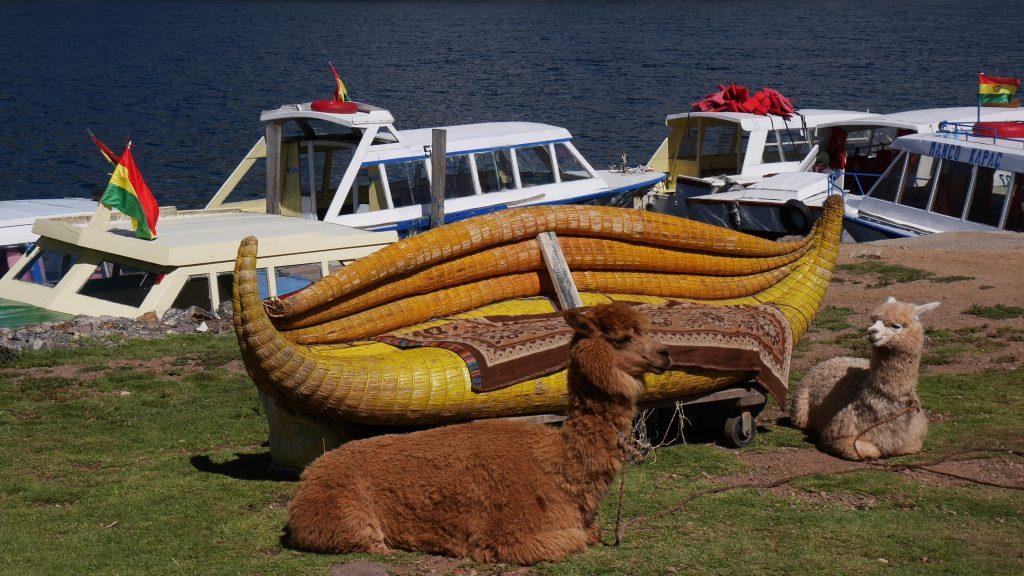 Barque et lamas