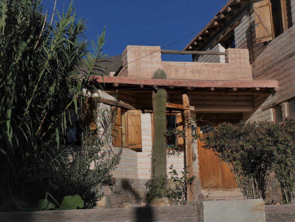 Maison avec cactus intégré au toit