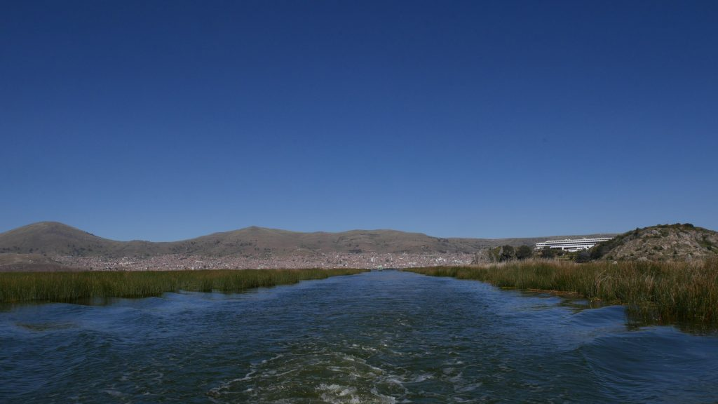 Dans les marais de totora