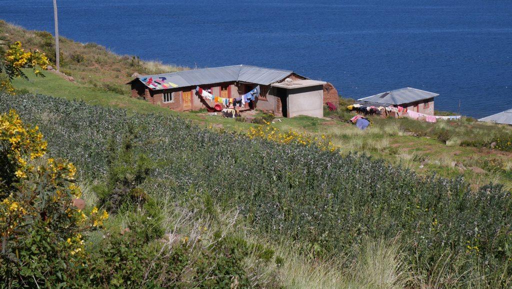 Une petite maison sur la presqu'pile