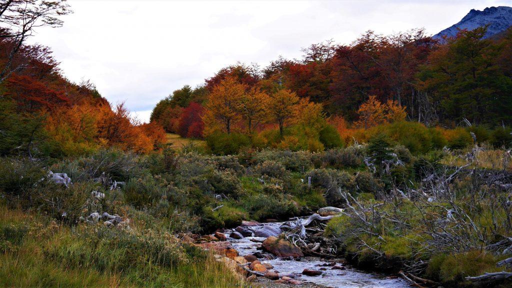 L'automne est bien là