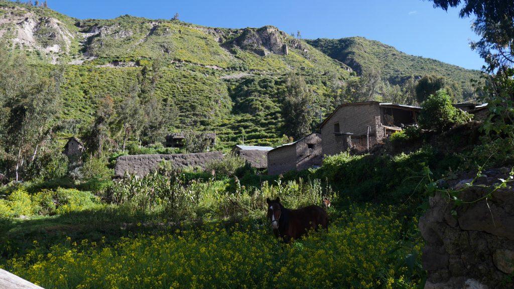 Un petit hameau dépendant de Charcana