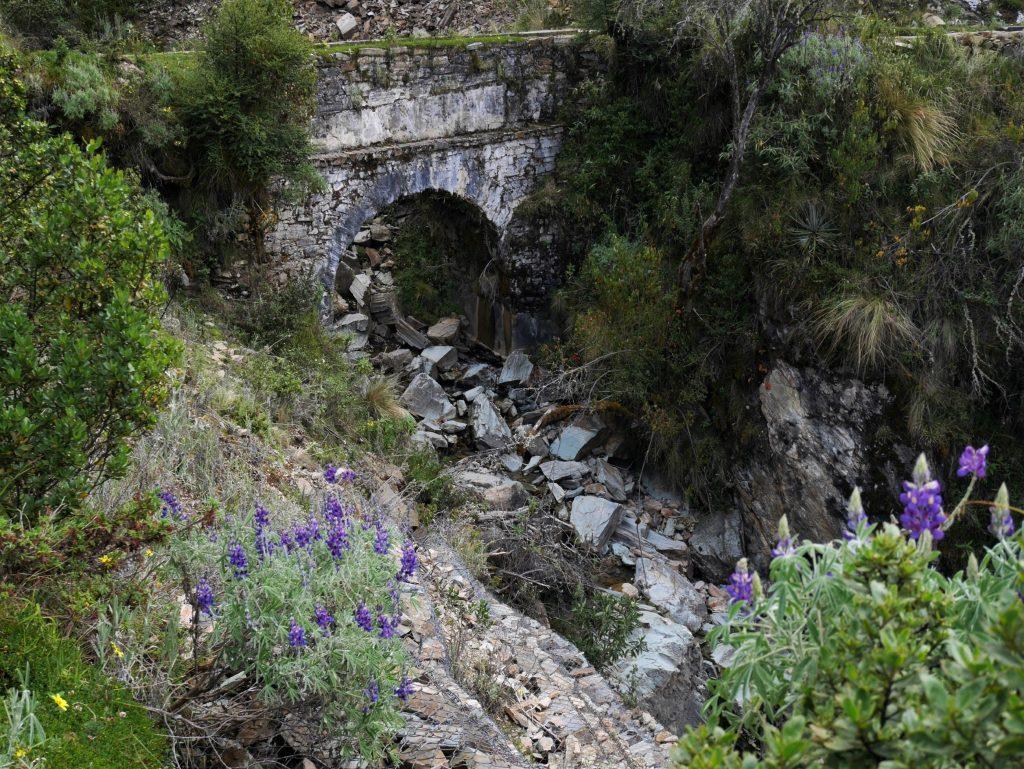 Un des ponts du parcours